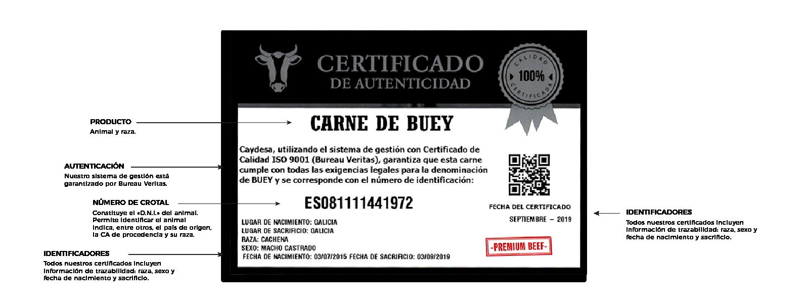 certificado_buey