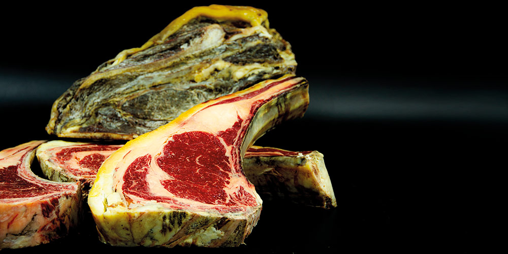 Buena pieza de carne - Caydesa